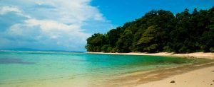 5 best beaches in Havelock Island in Andaman